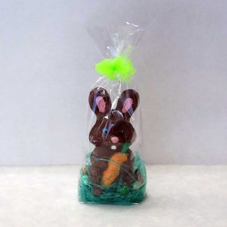 Easter Bunny Holding Carrot